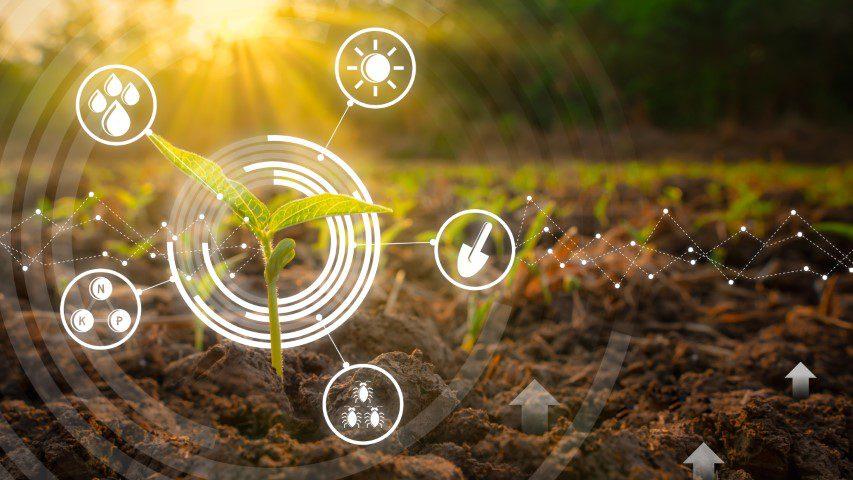 Trends_Landwirtschaft_169 (Small)